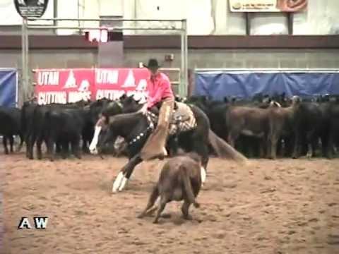 Cutting Horse For Sale - Lorrettas Lynn - Utah Futurity 4 year old Non Pro