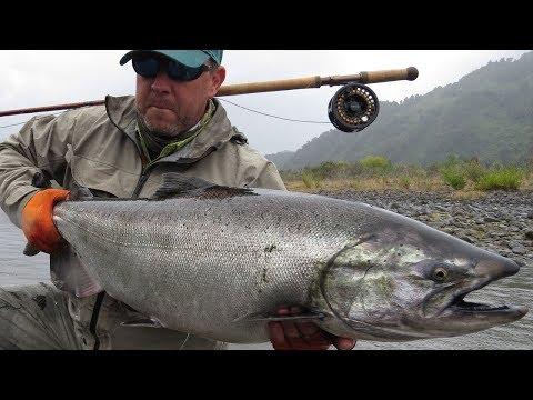 Chinook Salmon King Fishing In Chile Season 2015