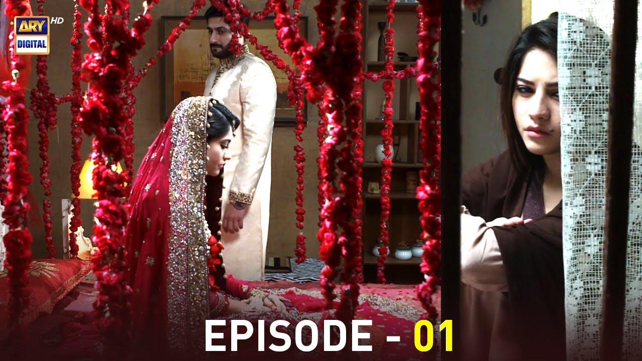 Download Anabiya Episode 1 | Neelum Munir | Kamran Jeelani | ARY Digital
