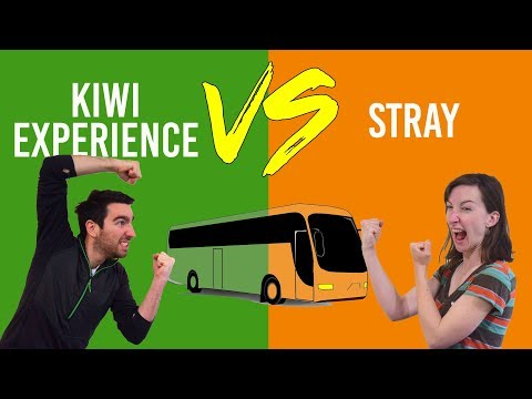 Kiwi Experience Vs Stray: Which Backpacker Bus to Travel New Zealand?