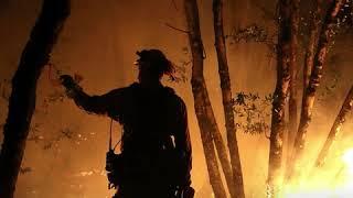 Incendie en Californie: le bilan s'alourdit à 31 morts et 400 disparus