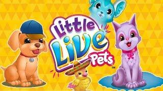Little Live Pets /Веселые Игры с Маленькими Домашними Животными.Уход за Литл Лайв Петс.Мультик