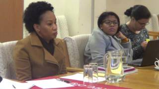 Relationship with other Constitutional bodies, CEO Lindiwe Khumalo