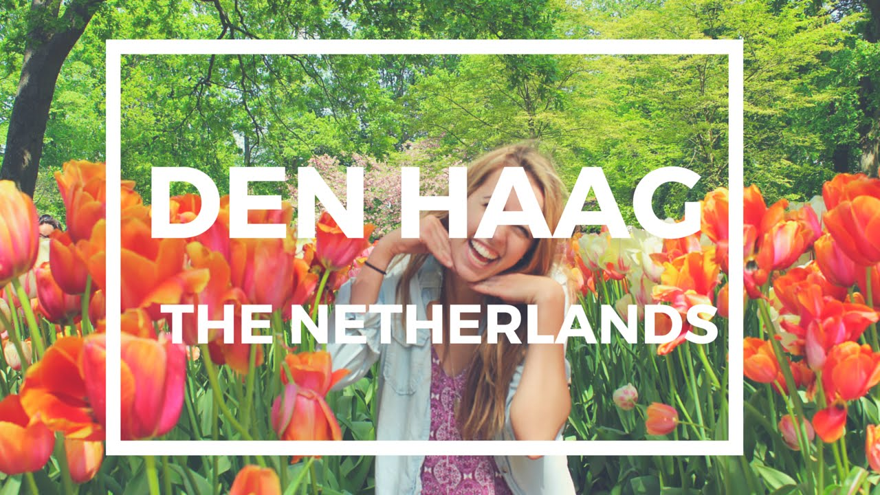 TRAVEL GUIDE: Den Haag + Day Trips image