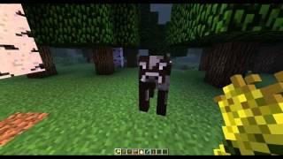 Как приручить животных Minecraft!