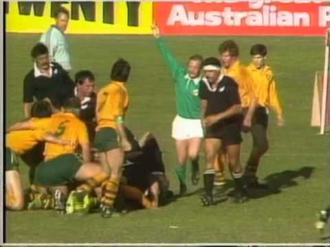 Bledisloe Cup Test 1984 (3rd) - Australia vs. New Zealand