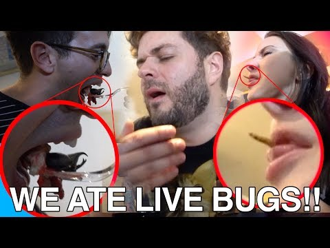 WE ATE LIVE BUGS! (NOT CLICKBAIT)
