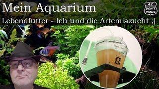 Lebendfutter - Ich und die Artemiazucht ;) | Mein Aquarium 77