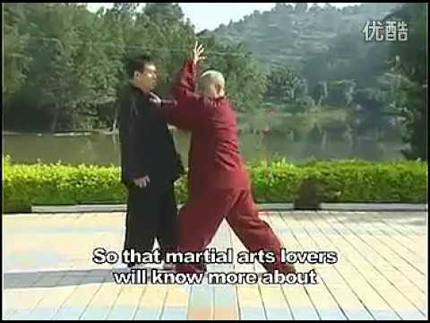 宋门心意六合拳  十大形 Xinyi Liuhe Quan