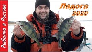 Зимняя рыбалка 2020 Ловля окуня на блесну Ладога