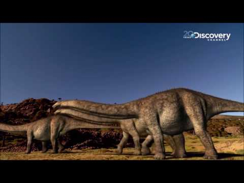 Sauropod Tribute - You Don