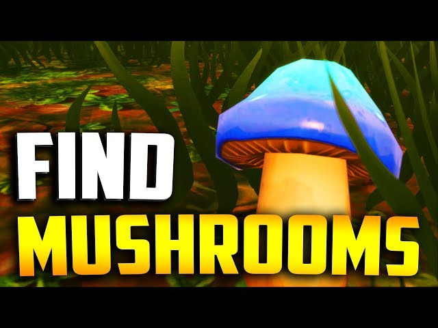 fortnite apples and mushrooms week 10 challenge how to find apple mushroom map locations daily star - fortnite mushrooms map