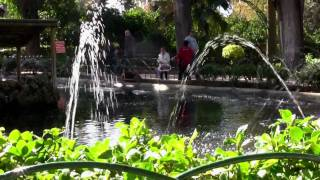 Malta Attard:  Citrus Festival - Festa Tac-citru 2010 - San Anton Gardens (events / Activities)
