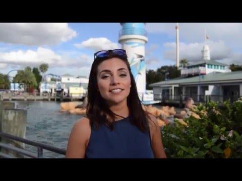 Expert Tips on Visiting SeaWorld Orlando