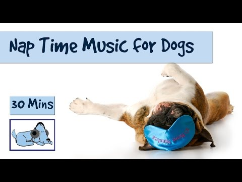 30-minutes-of-doggy-sleep-music!-the-perfect-nap-time-soundtrack-for-your-dog-or-puppy!