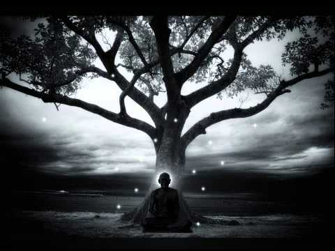 Peter Davison - Tree (Adagio - Music for Meditation)
