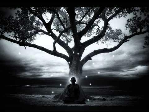 Peter Davison  Tree Adagio  Music for Meditation