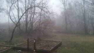 Creepy fog
