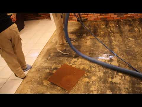 Basement Mud Extraction - Final Cleanup After Mudslide