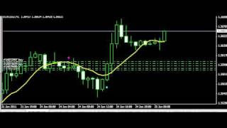 live trading forex 1