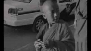 Pampeluna - Los Gringos Locos, Free Tibet