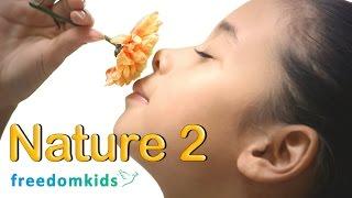 Kids Bible Videos - Nature Part 2 | Freedom Kids