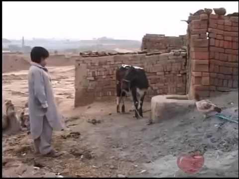 new funny pothwari drama clip http://youtu.be/DHCJm5qm4Tk