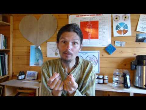 Démarrer par les bases ! - www.regenere.org