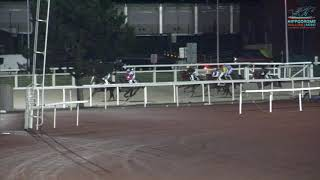 Vidéo de la course PMU PRIX ZONNEWENDE