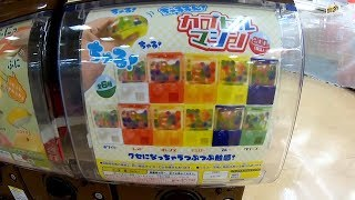 Miniature Orbeez Capsule Toy Machine & Jellyfish Squishy Gacha