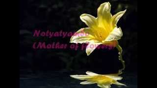 Berita - Notyatyambo (Mother of Flowers) English lyrics