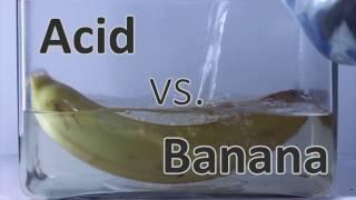 Banana vs. Acid | AcidTube