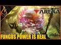 Fungus Deck Power Magic The Gathering Arena Closed Beta