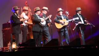 """Big Black Train"" by The Earls of Leicester @ IBMA 2015!"