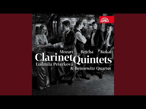 Clarinettino, Op. 11. Concertino for Clarinet and Strings - Allegro con moto - Tempo misterioso