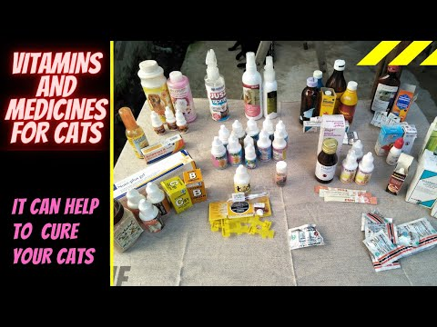 Vitamins and Medicines for Cats (Help to Cure Sick Cats)