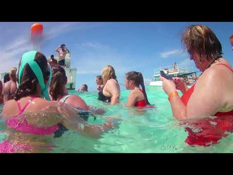 Swimming with Stingrays out of Georgetown Grand Cayman