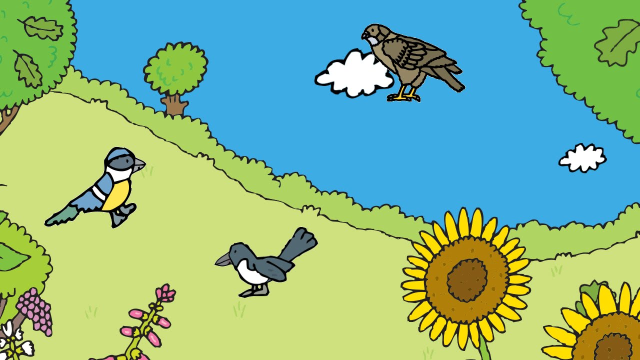 RSPB First Birds App For Kids Hands On Review