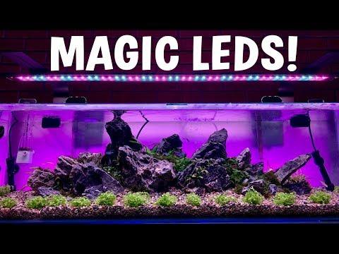 The ULTIMATE Aquarium LED UPGRADE!