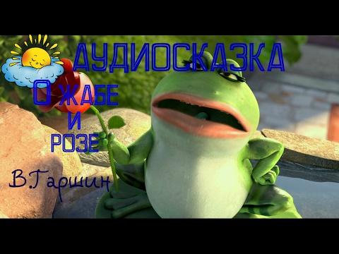 Аудиосказка о жабе и розе, В.Гаршин