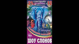 Новогодний цирк 2020 Шоу Слонов