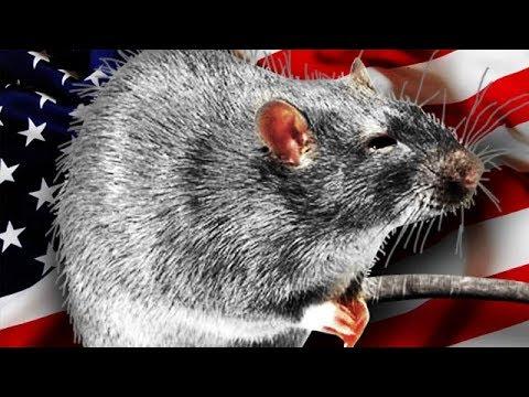 10 УЖАСОВ США в Сравнении с Россией! - Видео онлайн