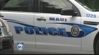 Could high-speed chase, deadly crash on Maui have been avoided?