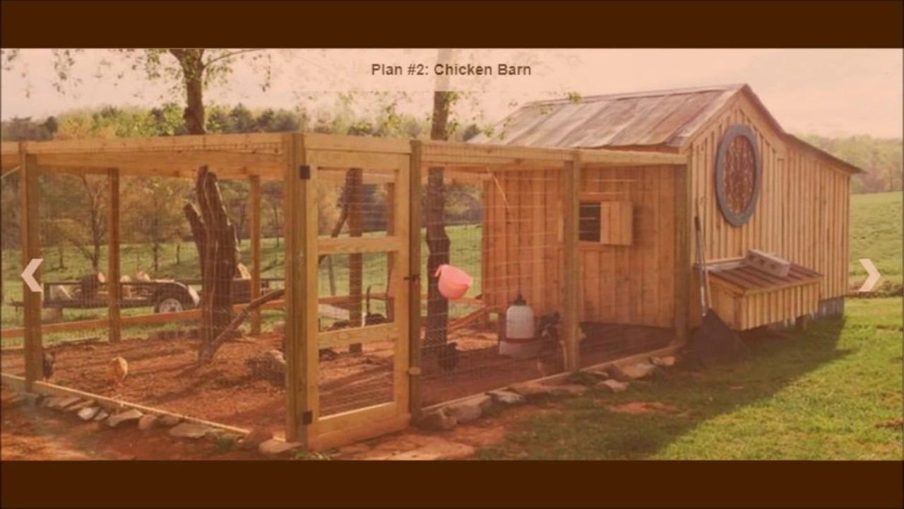 cheapest way to build a chicken coop build a chicken