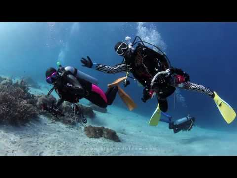 Diving Komodo 2016