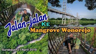 Jalanjalan ke Mangrove Wonorejo