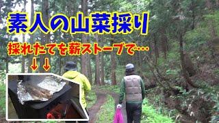 素人が山菜を採りに行って薪ストーブで焼いて食べる動画