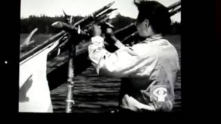 The father of survival shows - survival in the bush