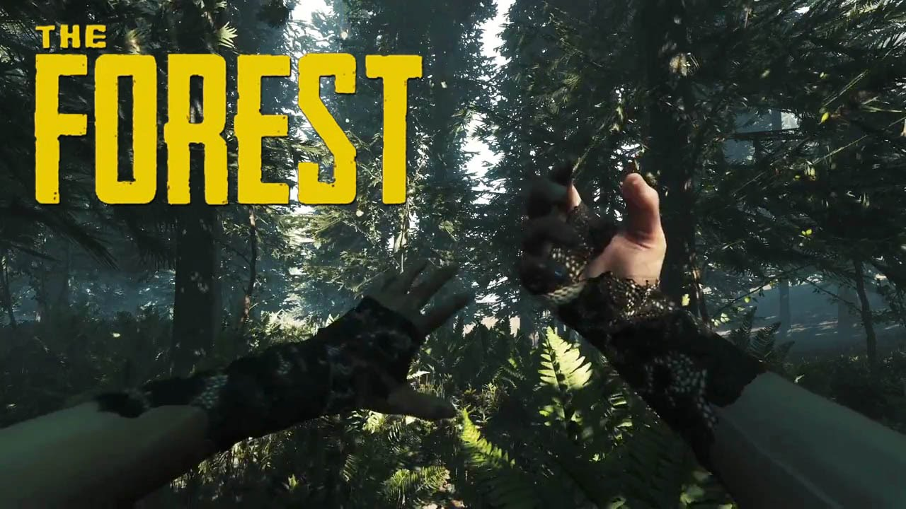 The forest 1080p