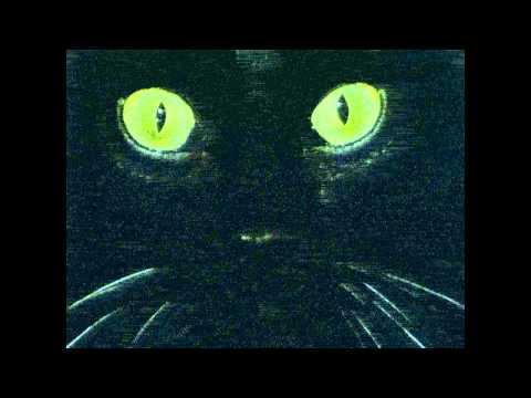 MEG - Volevo Un Gatto Nero